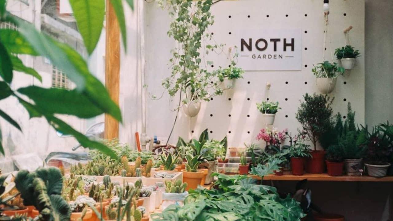 Tiệm cây cảnh Noth Garden