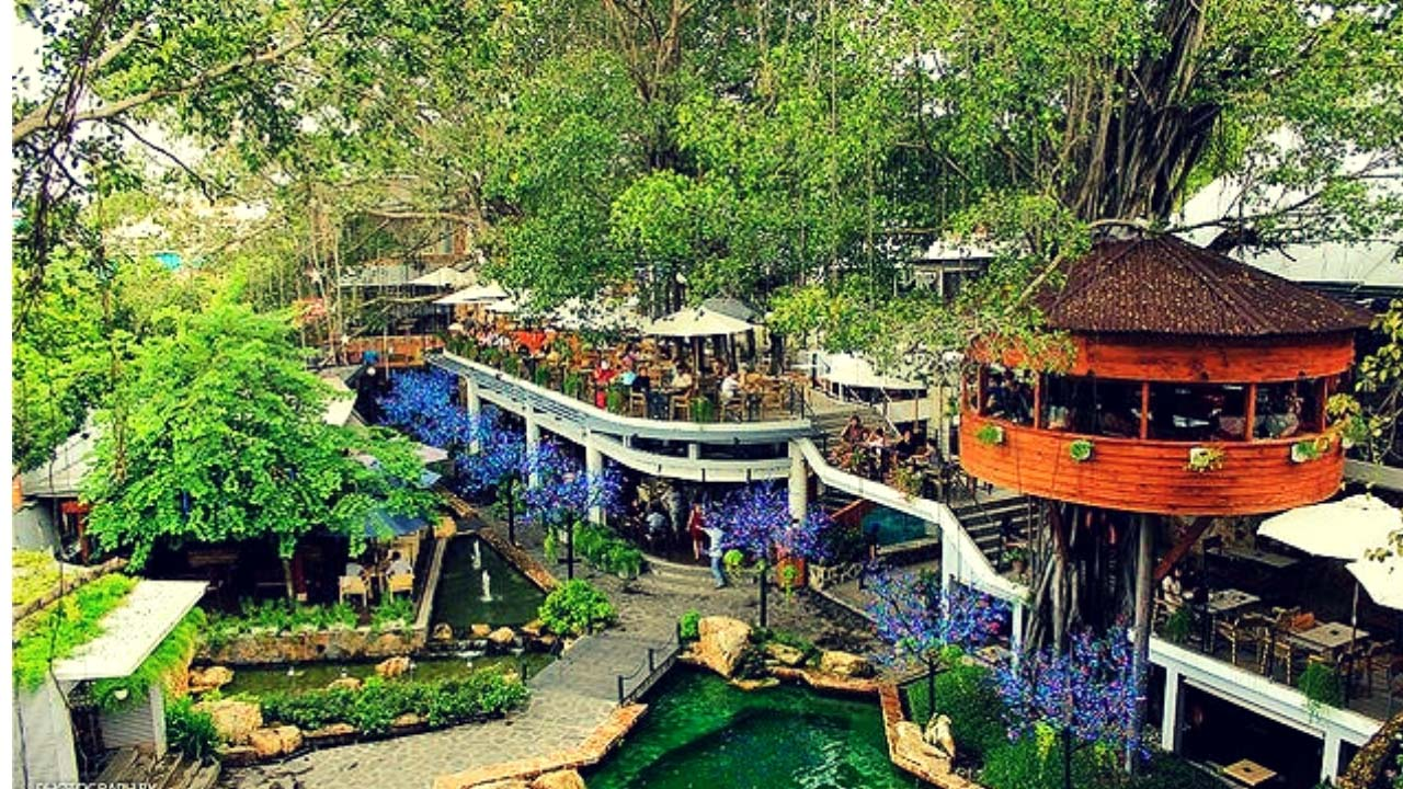 Du Miên Garden - quán cafe trên cây cho bạn view sân vườn xanh mát