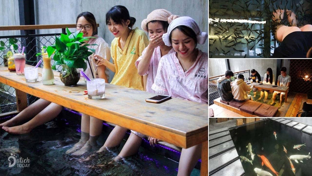 Massage chân Hà Nội bằng cá tại Koi cafe spa