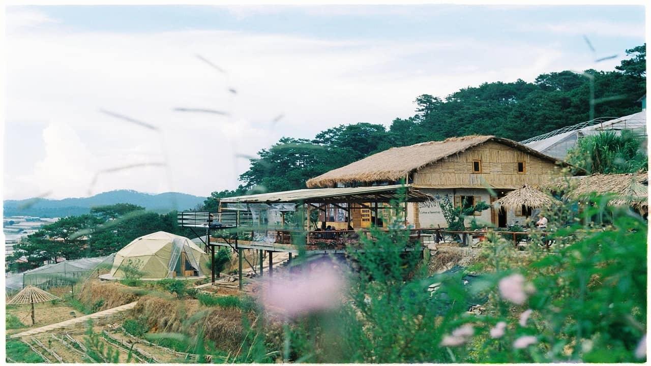 The Organic Life Homestay Bảo Lộc tựa  như nông trường xanh giữa cao nguyên