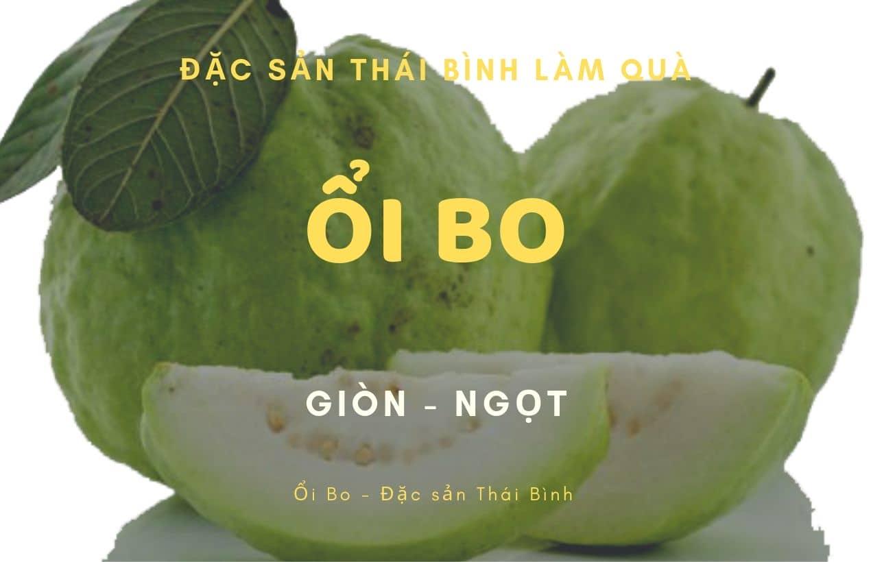 Ổi Bo - giống ổi ngon nhất Thái Bình