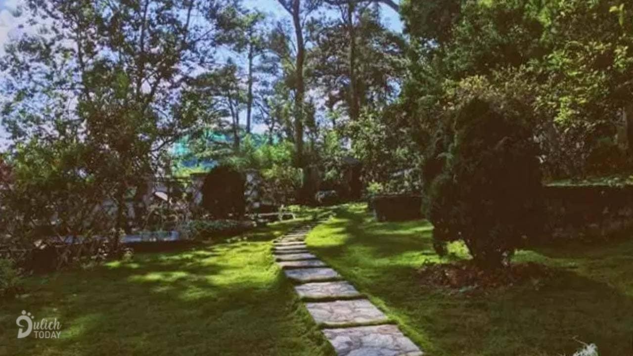 Một góc vườn của villa Pháp cổ