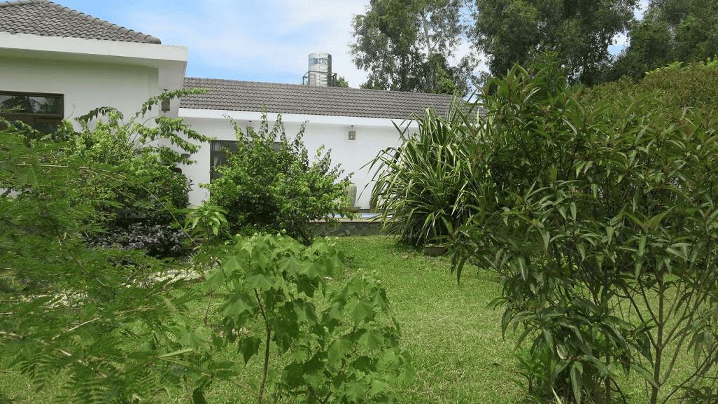Biệt thự tọa lạc giữa khu vườn cây ăn trái, view hướng rừng