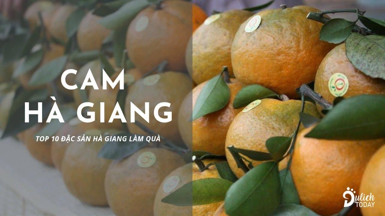 Cam Hà Giang ngọt, nhiều nước