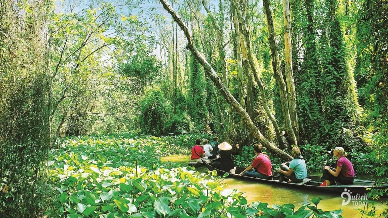 Đồng Tháp Mười là địa điểm du lịch 2/9 cho những du khách thích khám phá thiên nhiên hoang sơ miền sông nước