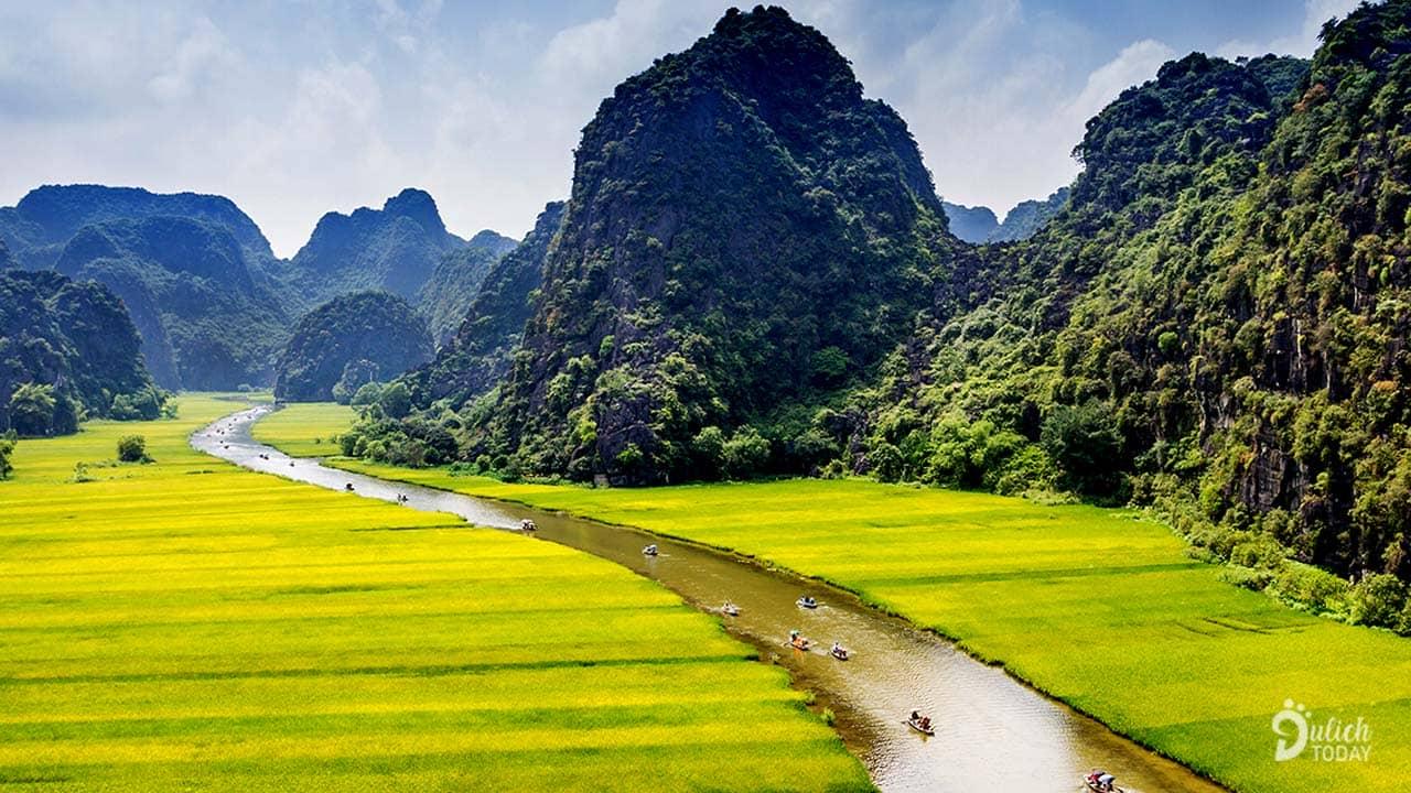 Tam Cốc với cánh đồng lúa thẳng tắp bao la và những dãy núi đá vôi trập trùng