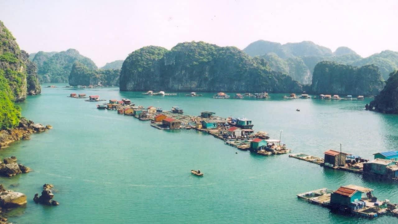 Lưu ý khác khi thuê tàu thăm vịnh Lan Hạ