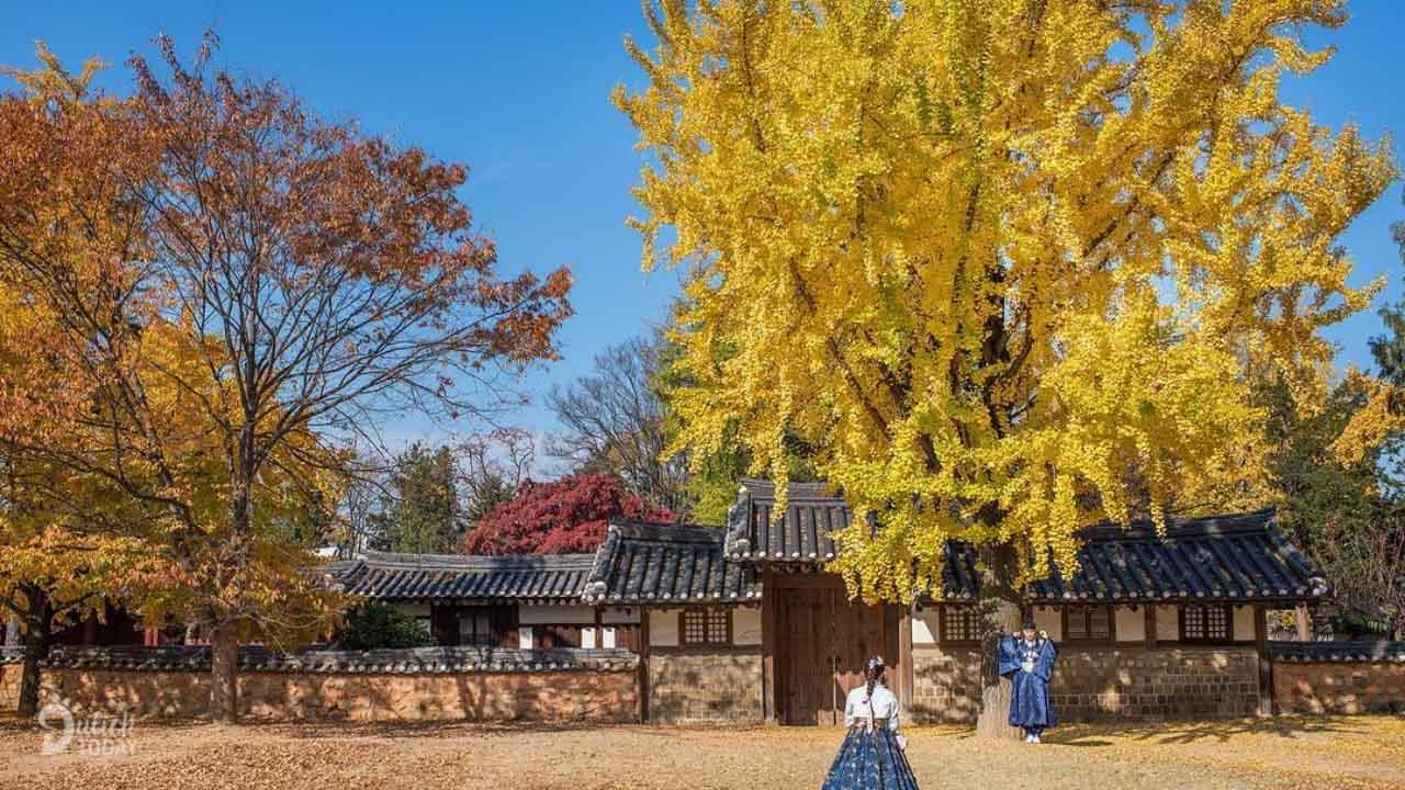 Làng cổ Jeonju Hanok - mộc mạc và bình yên đến lạ