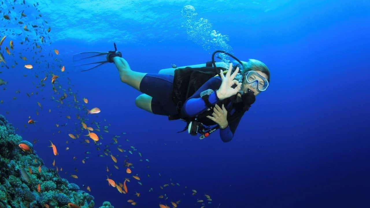 Tour Cù Lao Chàm lặn bình khí ngắm san hô