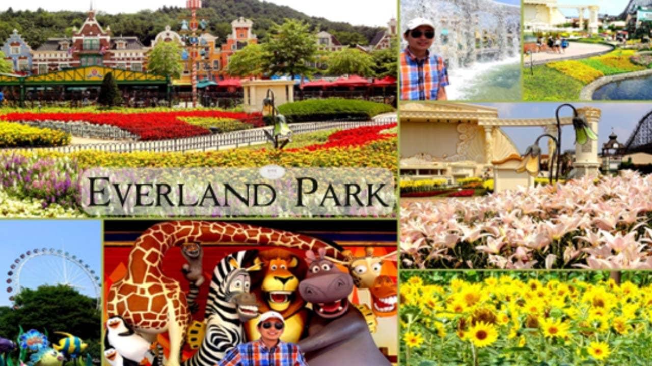 Du khách vui chơi tại công viên Everland - công viên chủ đề lớn nhất ở Hàn Quốc