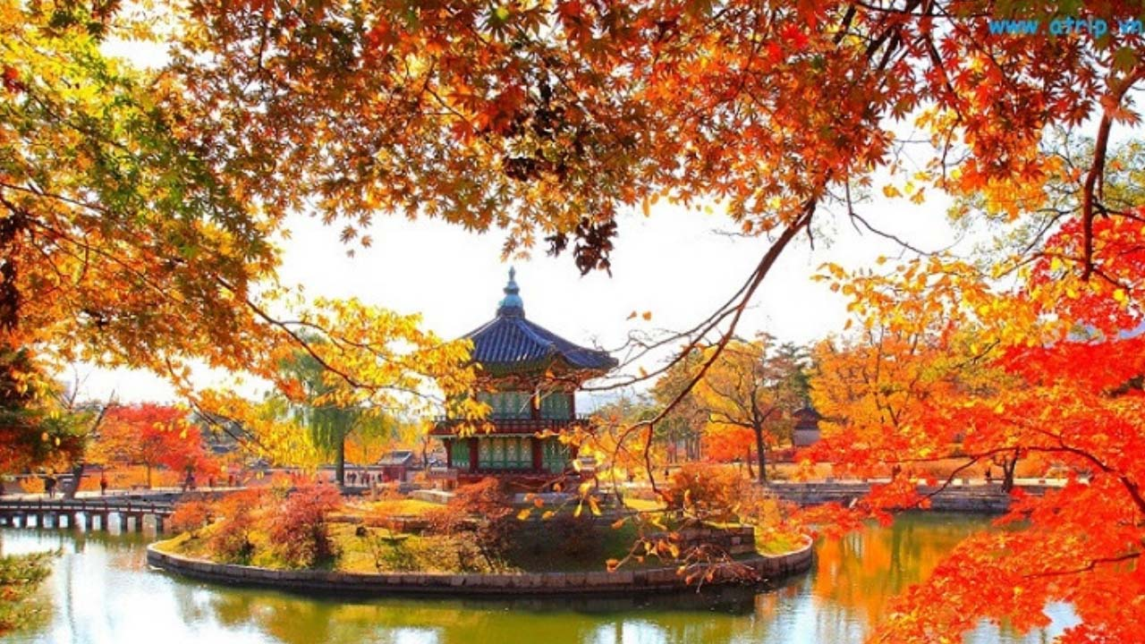 tour Hàn Quốc tháng 10