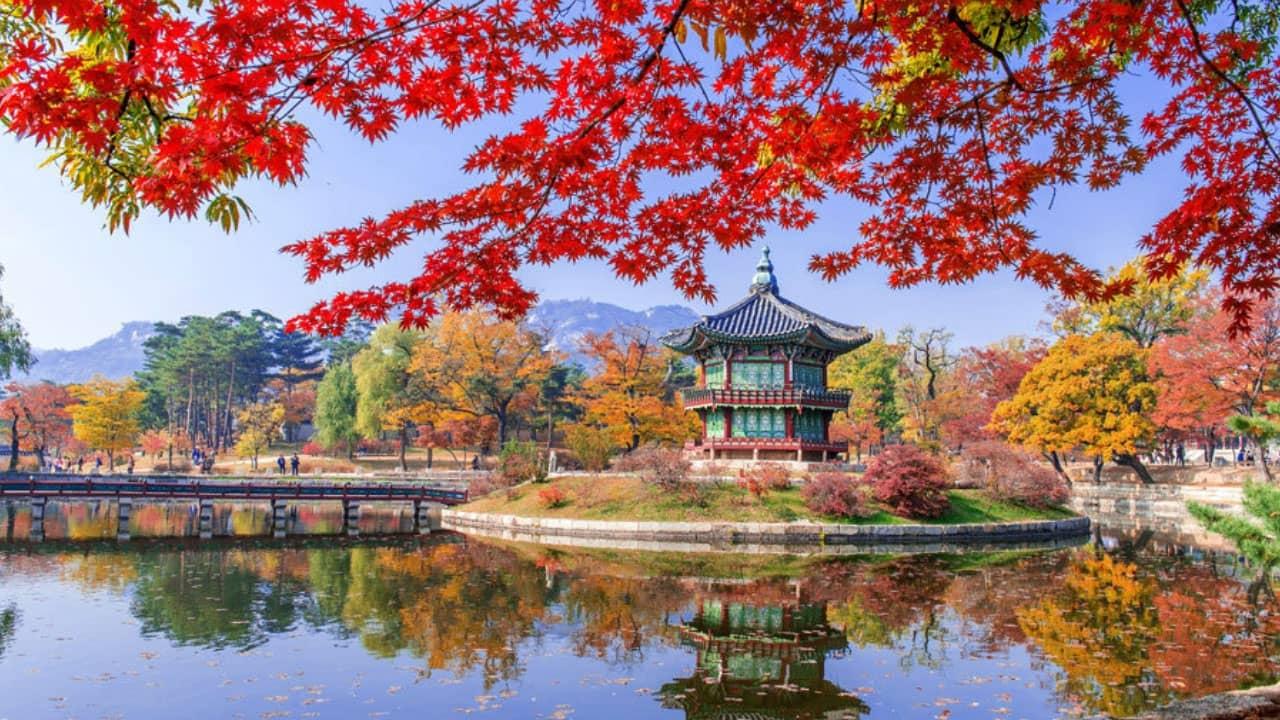 tour Hàn Quốc tháng 11