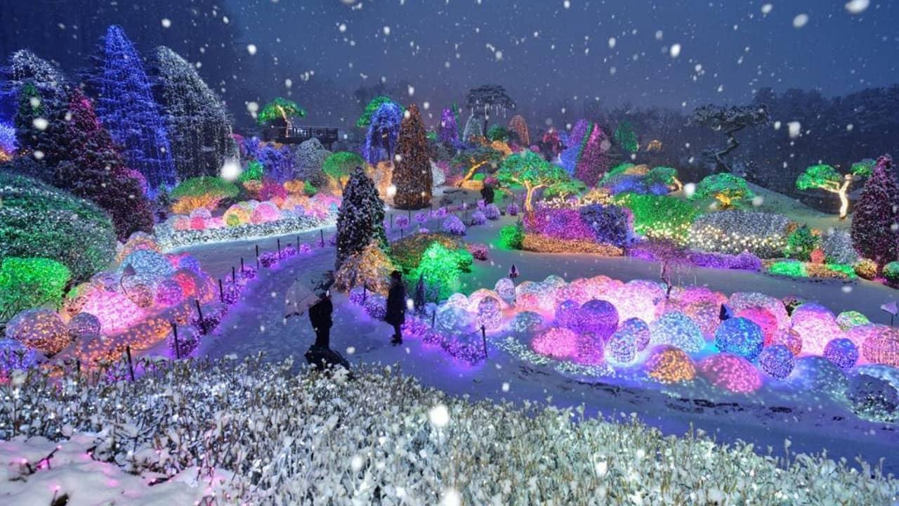 Tour trải nghiệm mùa đông tại Hàn Quốc cùng lễ hội ánh sáng mùa đông