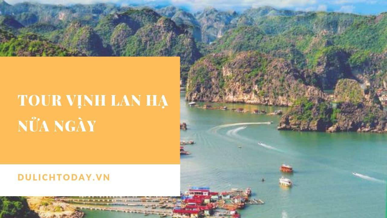 Thăm vịnh Lan Hạ, đảo khỉ với lịch trình ngắn chỉ nửa ngày