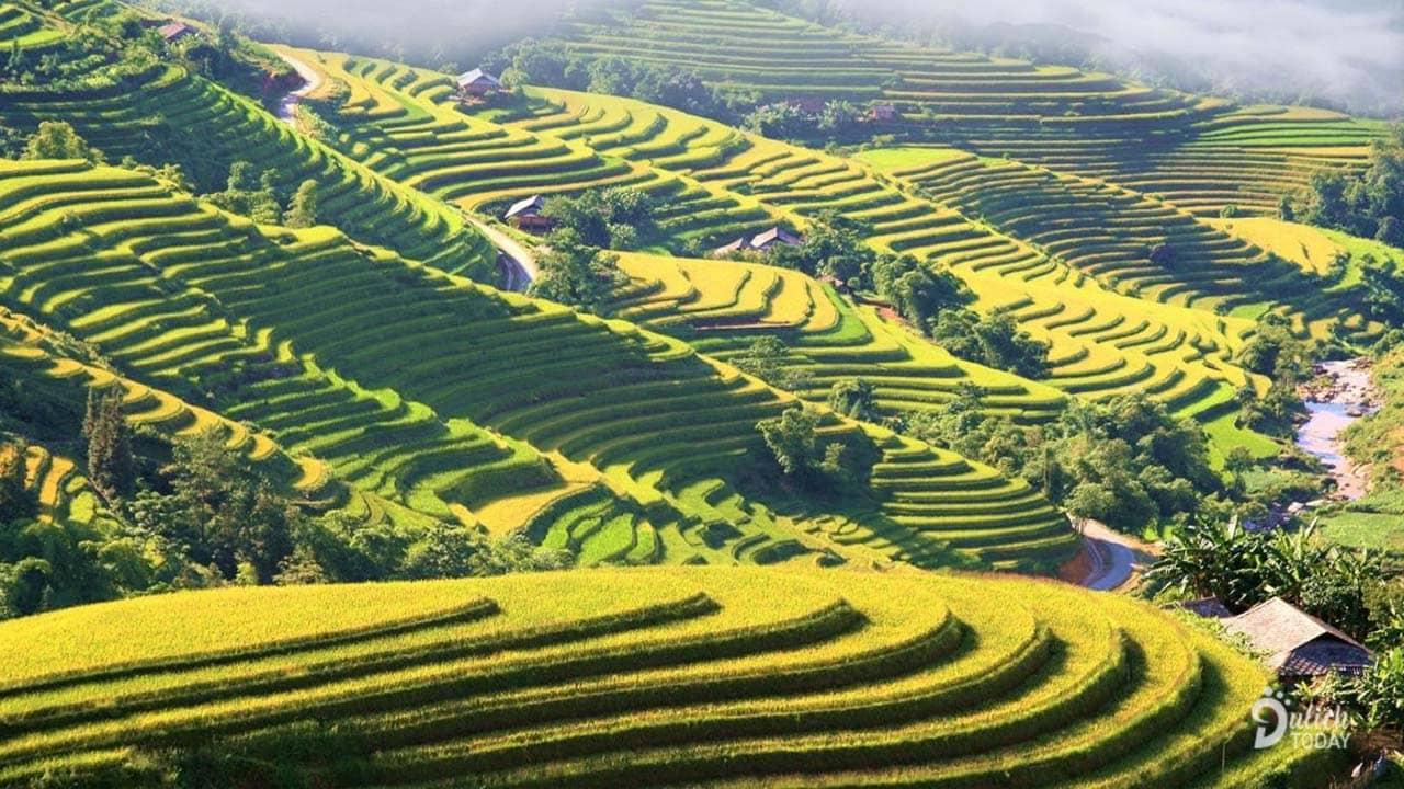 Ruộng bậc thang Hoàng Su Phì là địa điểm đẹp ở Hà Giang, nhất là vào mùa lúa chín