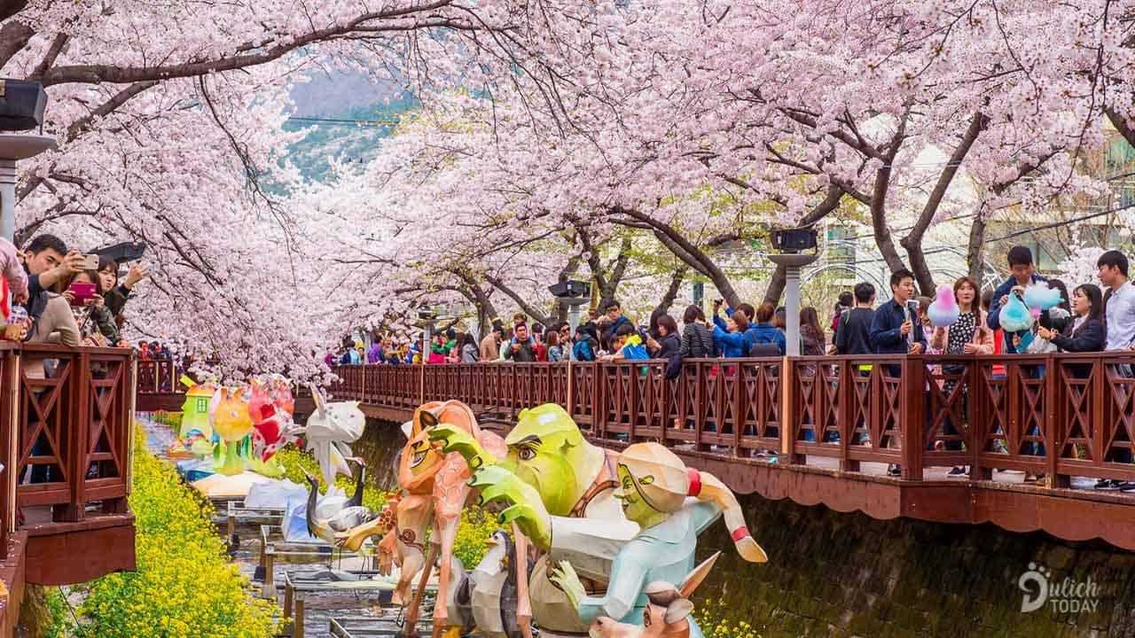 Du khách nên đi du ngoạn và tận hưởng cái tiết trời mùa xuân ấm áp dễ chịu.