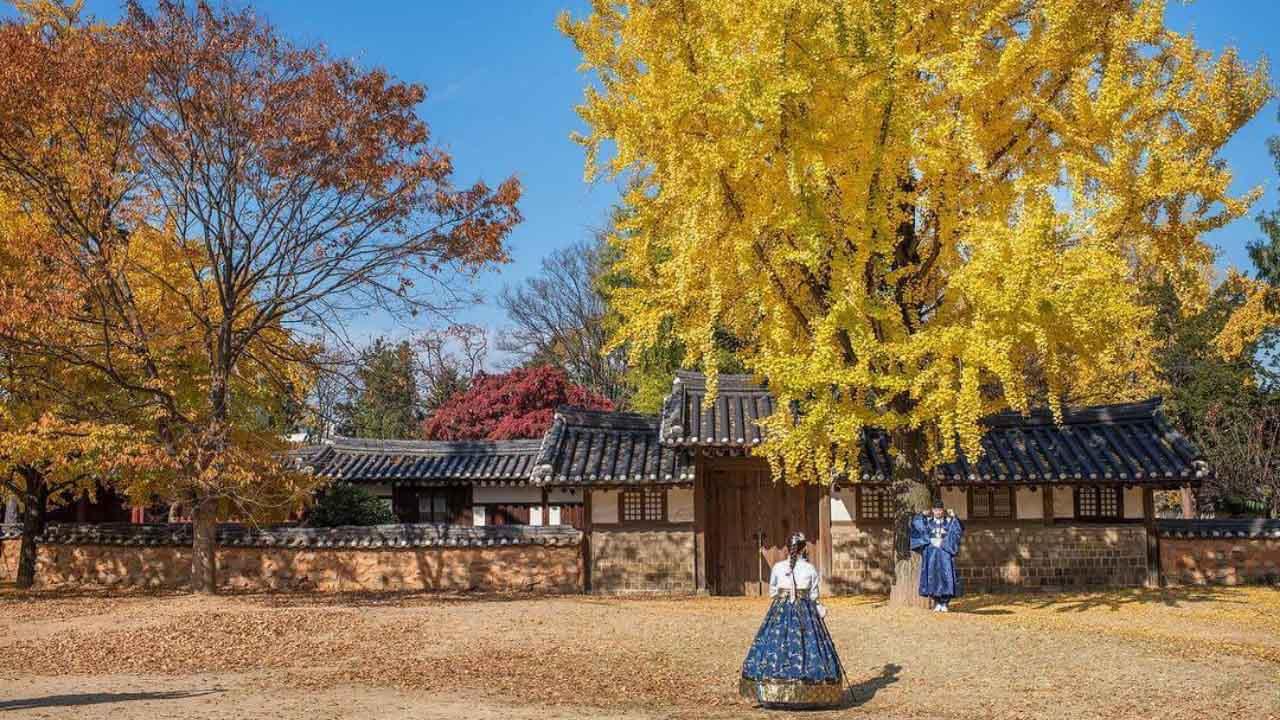 Du lịch Hàn Quốc mùa thu nên thuê hanbok để có ảnh xịn sò
