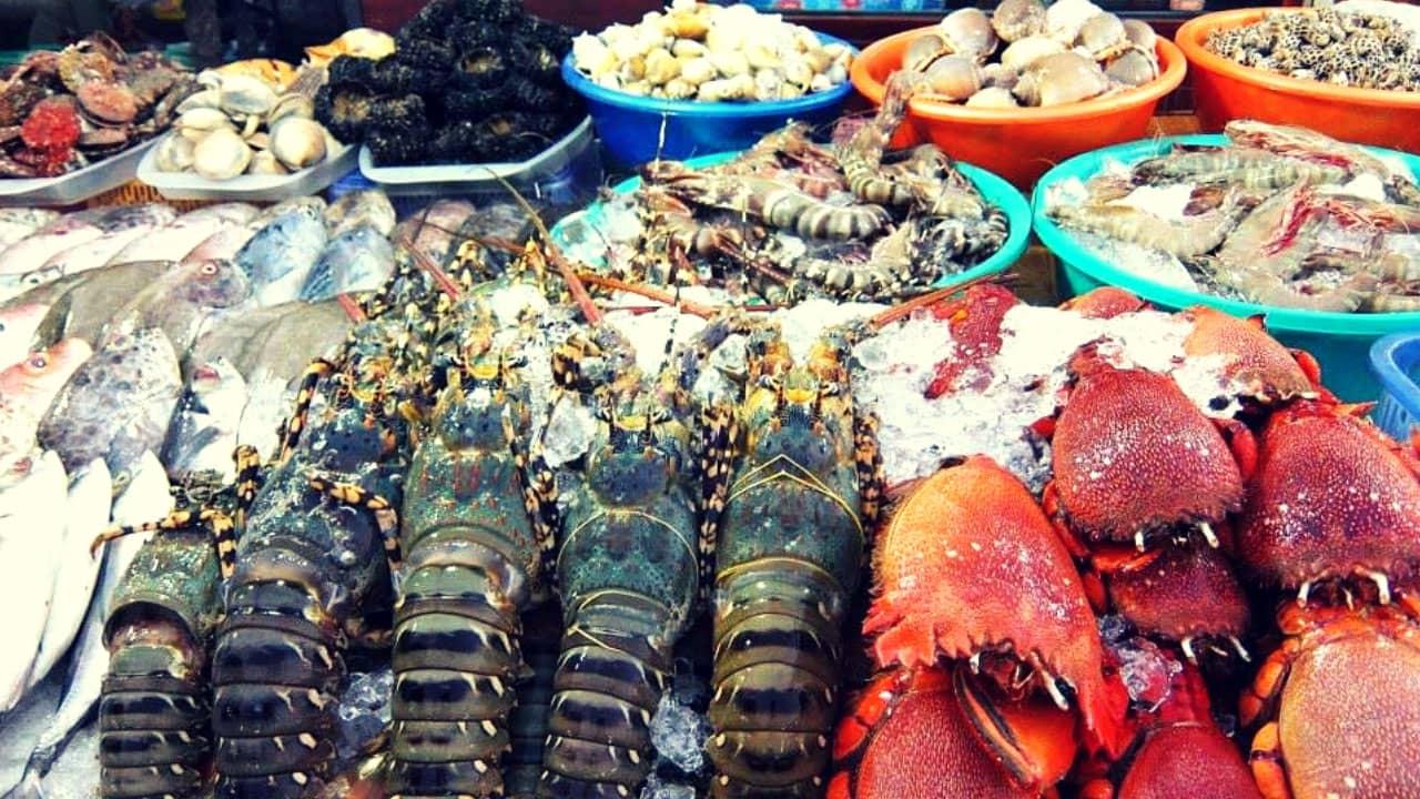Thưởng thức đặc sản biển cả tại Cù Lao Chàm