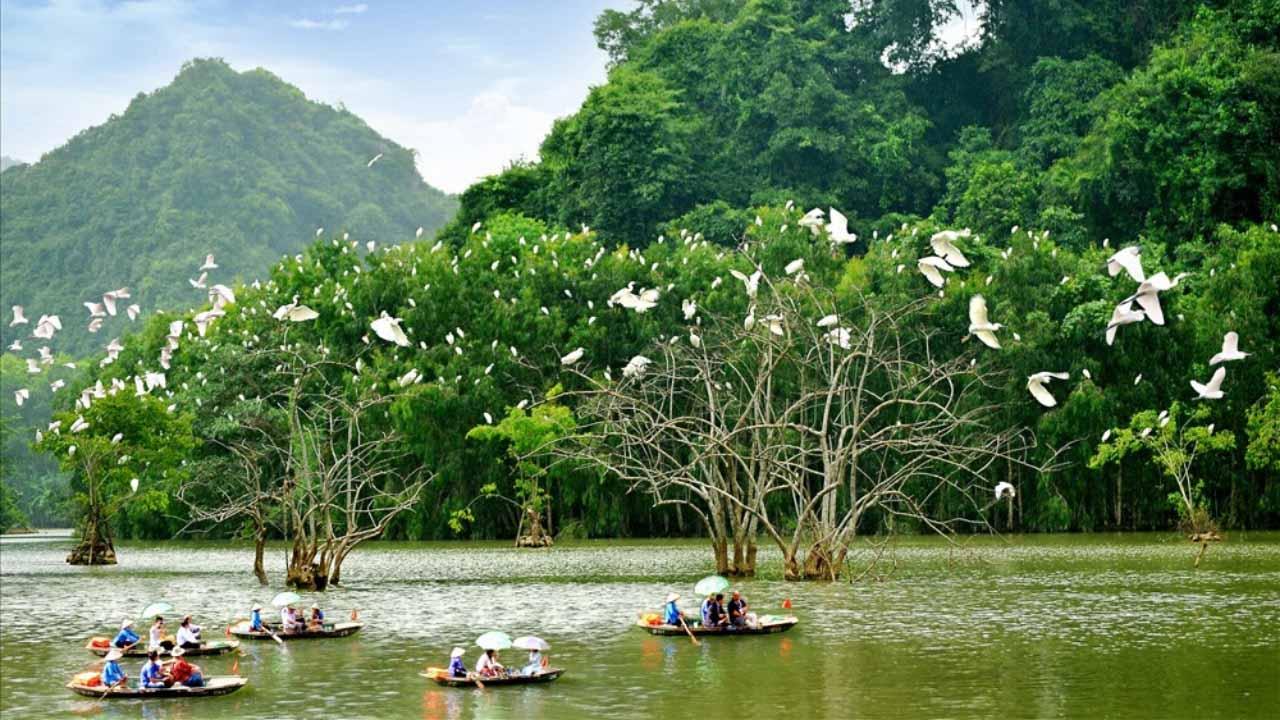 Thung Nham là điểm du lịch gây ấn tượng với du khách bởi vườn chim nổi tiếng.