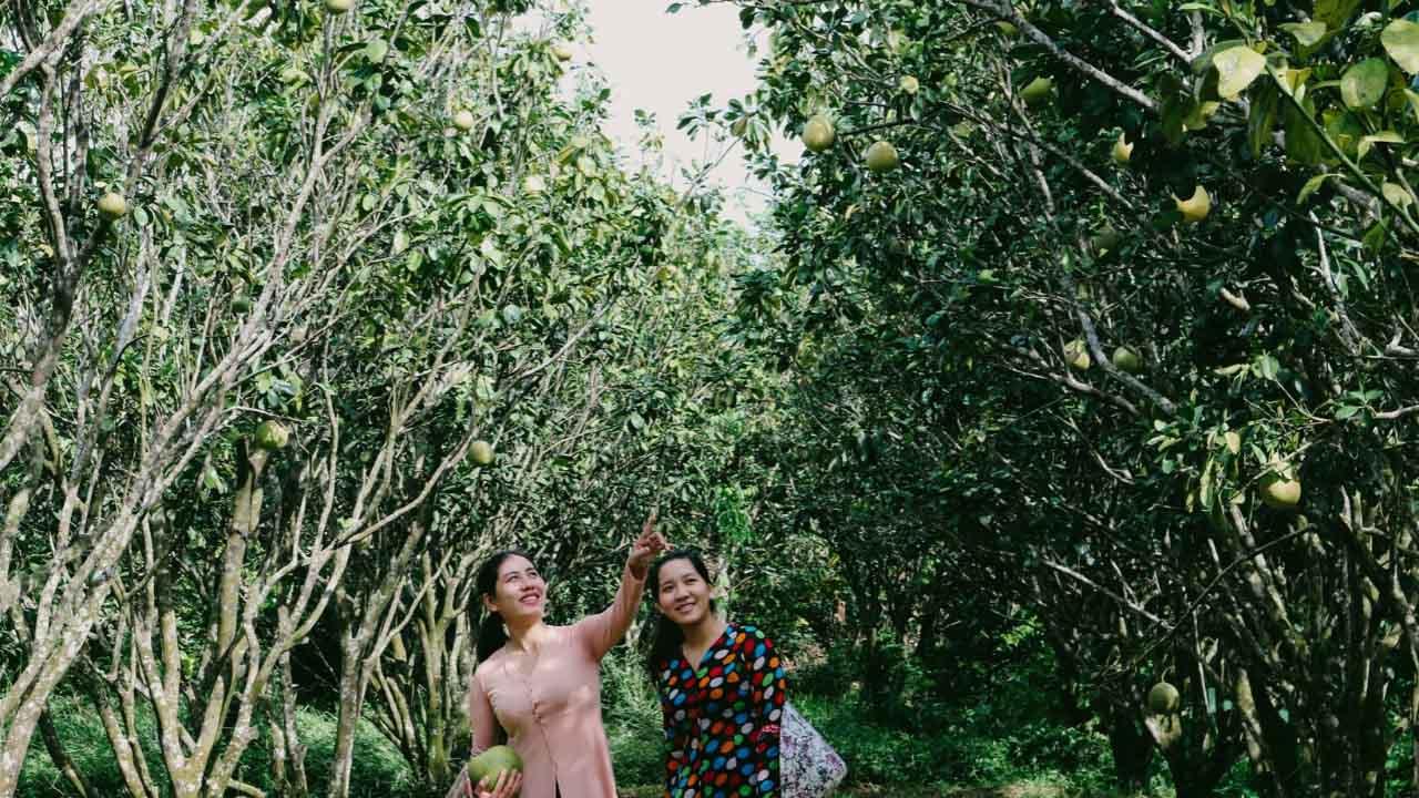 Khám phá miệt vườn trái cây tại tour Cần Thơ 2 ngày 1 đêm