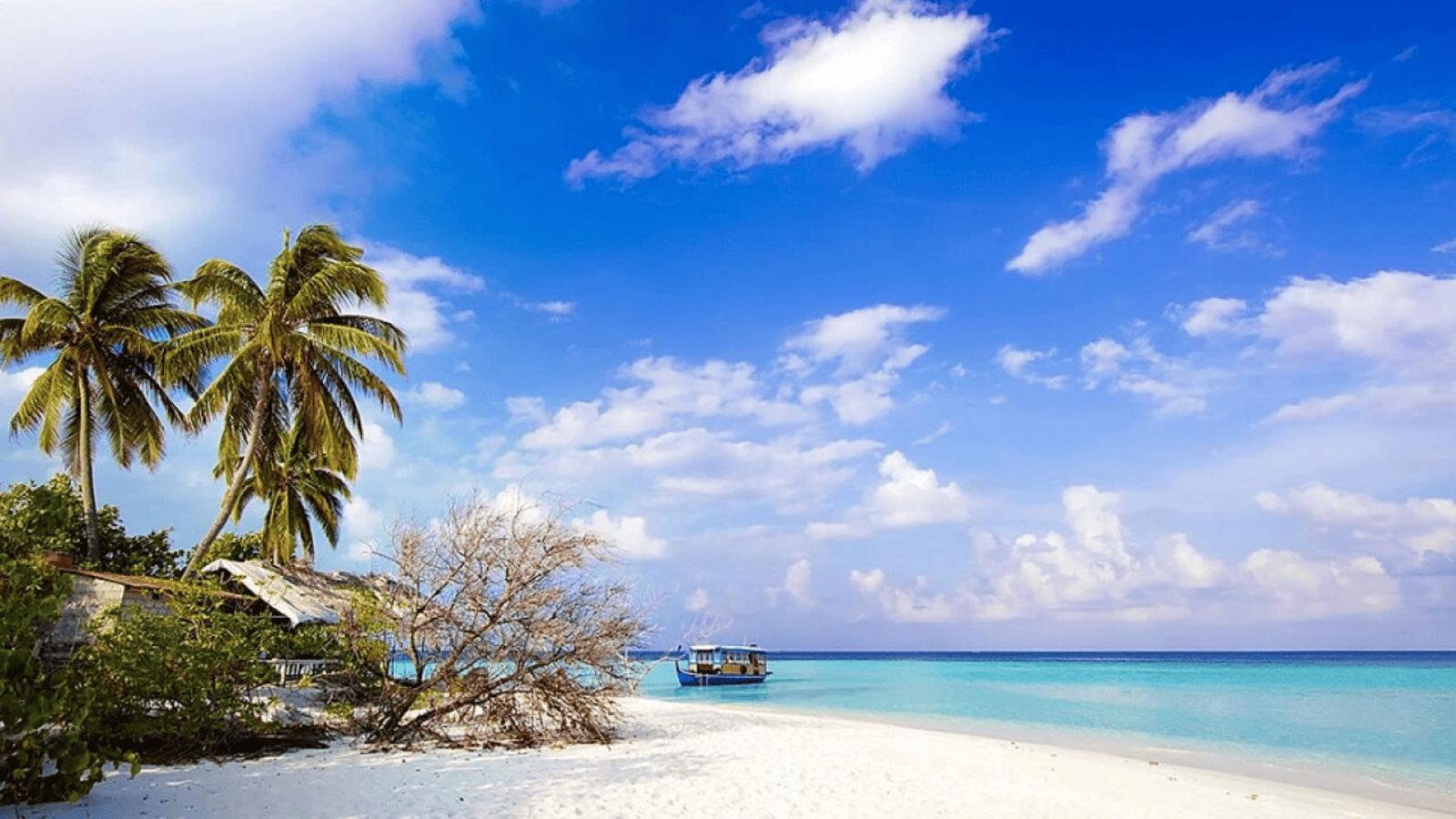 Bãi biển trải dài đẹp mộng mơ của Bãi Trường