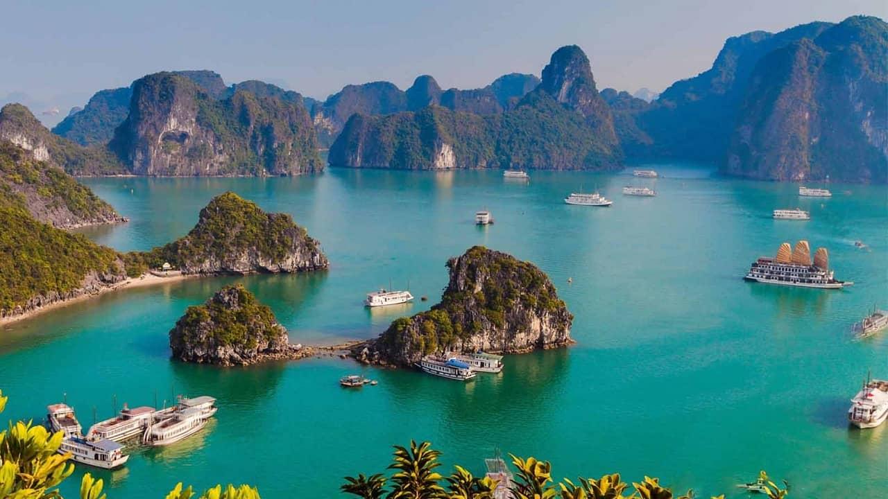 Lựa chọn cano theo lịch trình khám phá vịnh Hạ Long