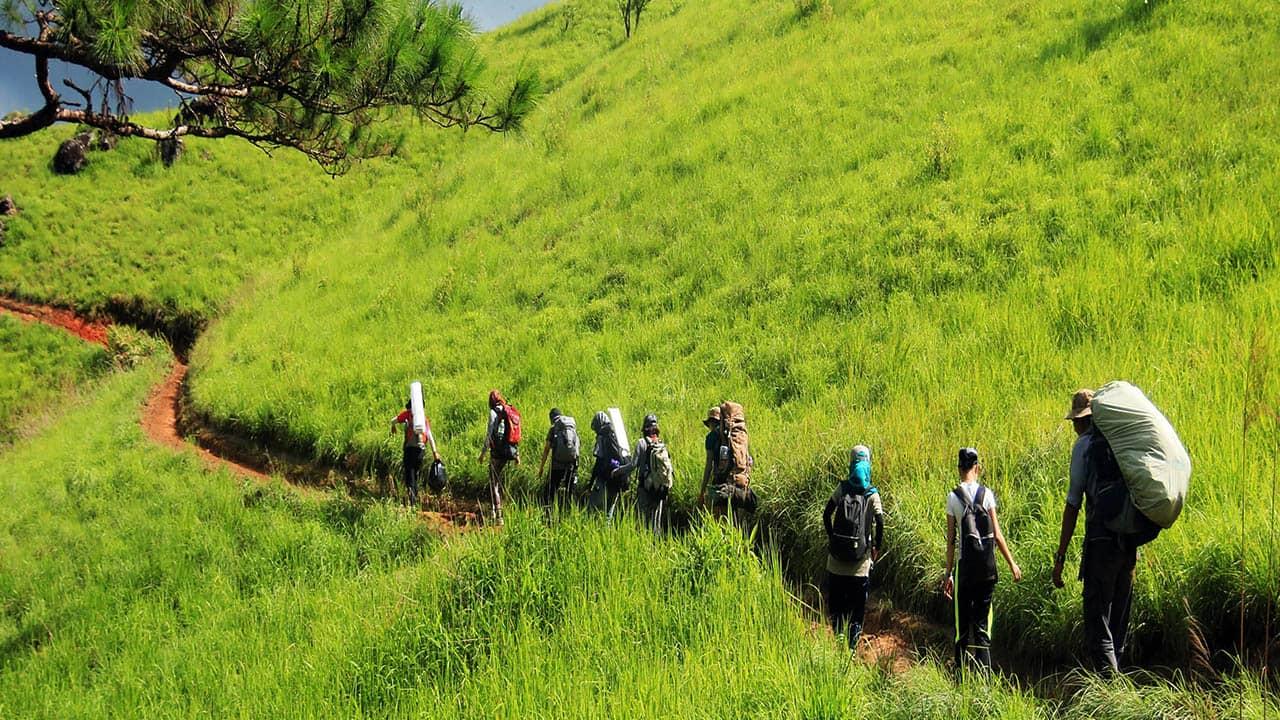 Nên có 2 - 3 porter để dẫn đường và kiểm đoàn nếu đội hình người tham gia trekking đông.