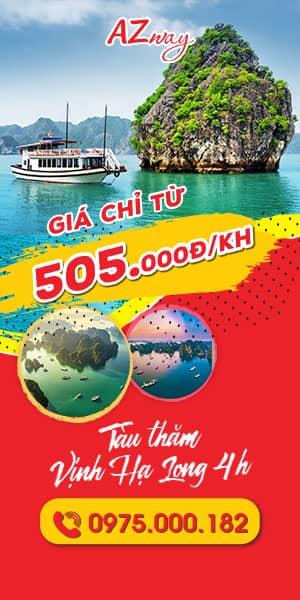 Banner quảng cáo tàu thăm Vịnh Hạ Long 300x600